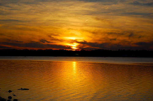 Golden Moment by Bellamy Photography via I {heart} Rhody
