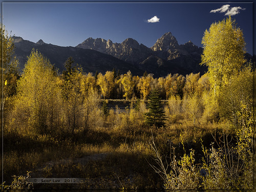 Teton Gold by Just Used Pixels