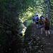 East Maui Rainforest Hike