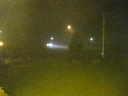 Long Island: Fog. Photo from http://onthewilderside.com