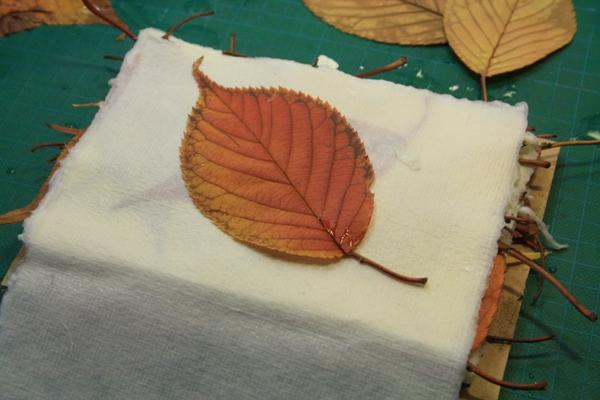 Leaf Monoprinting 16-01