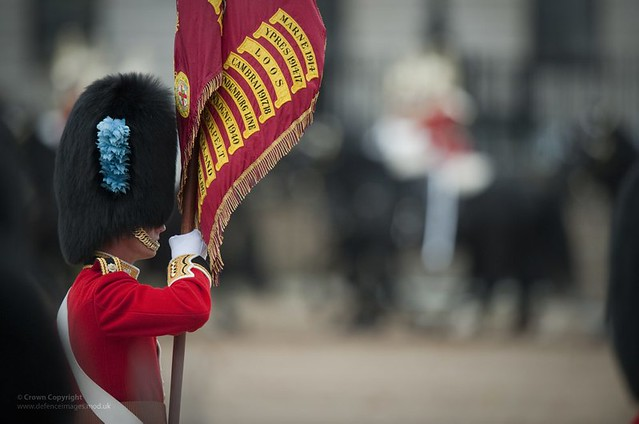 Guardsman of the Irish Guards Holding Regimental Colours