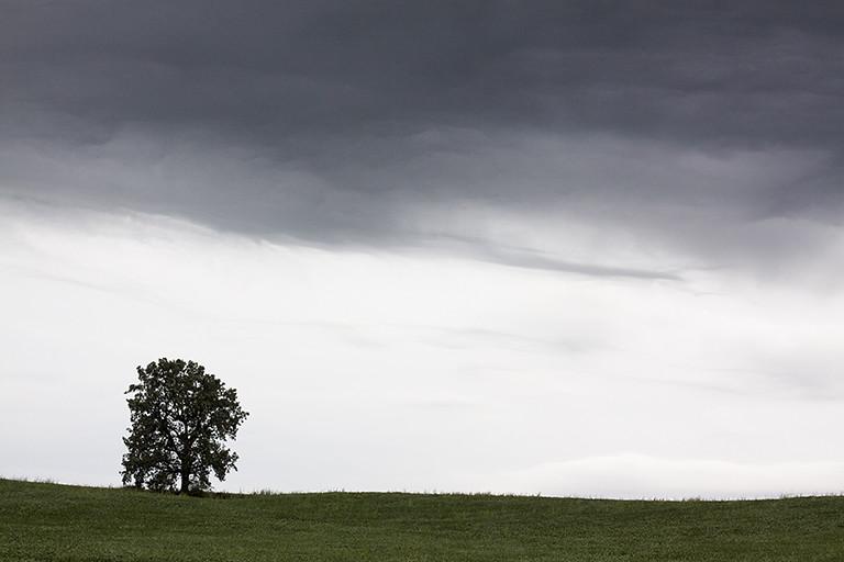 skyfall 4
