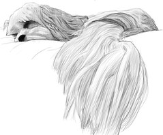 Angelsketch