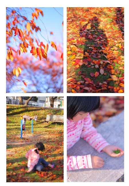 子供写真 赤ちゃん写真 屋外 出張撮影 瀬戸市 尾張旭市 長久手市 春日井市 名古屋市東部