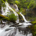 Panther Creek Falls, Washington by Will Shieh