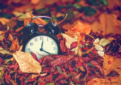 Tiempo de otoño