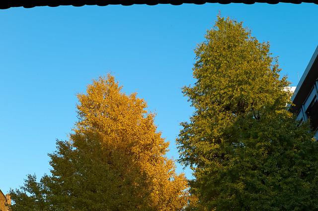 M9_2012-12_013