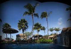 Pool Panorama 1