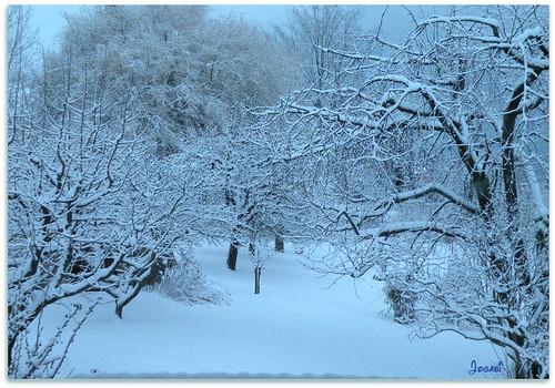 La neige est arrivée .. by Jogabi-Michèle