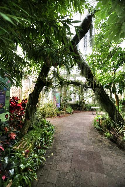 2012 December 07 Botanical Gardens Buffalo Ny Flickr