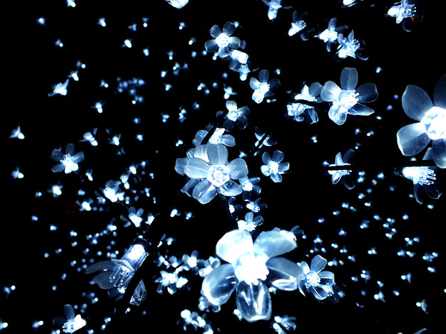fairy lights por John Cutler