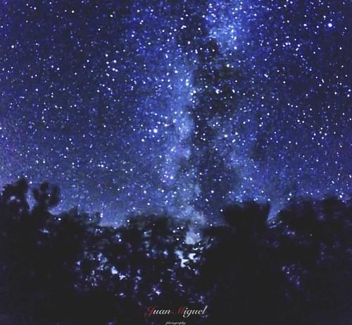- Milky Way -   Vía Láctea desde la arboleda.   #milkyway #milkywaygalaxy #astrophotography #astrophoto #timelapse #thetimelapsegroup #milkywayphotography #natgeospace #universetoday #awesomeearth #awesomeglobe #nightscaper #nightphotography_exclusive #wo