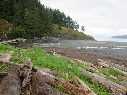 storeys beach tex lyon regional trail dillon point fort rupert hardy vancouver island british columbia canada
