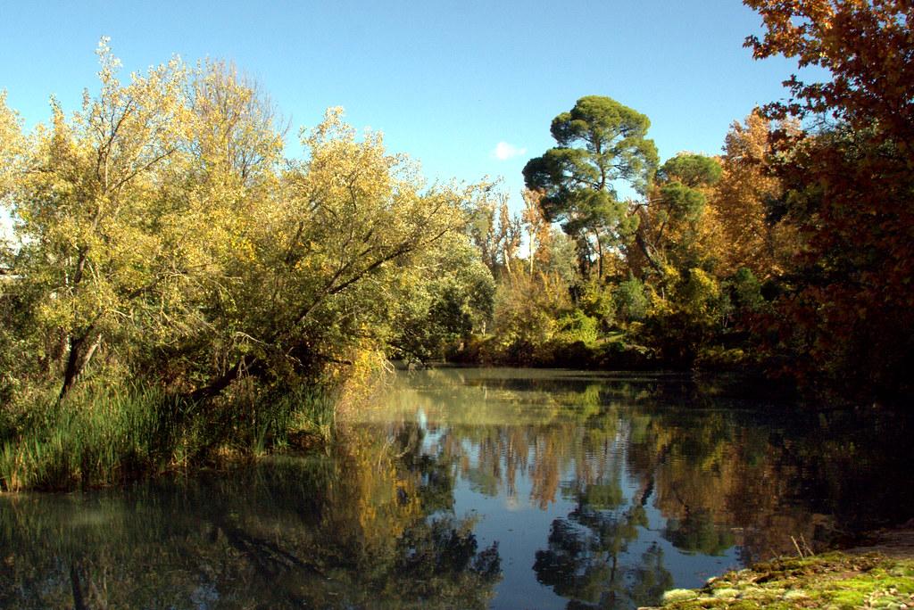 Río Tajo, otoño