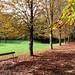 Small photo of Parc de Saint-Cloud