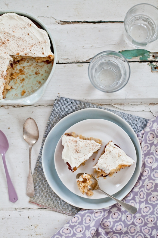 Parsnip Cake _ Slices
