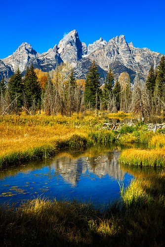 landscape parks national teton