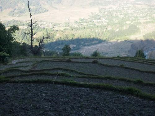 Himaraya Trekking-21