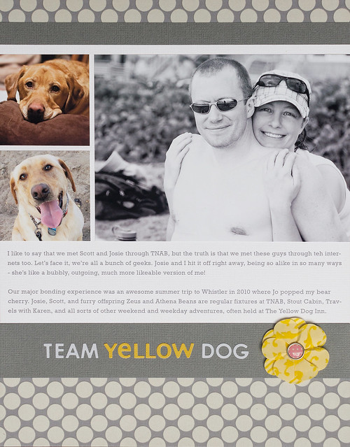 Team Yellow Dog