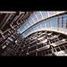 Escalators by tk21hx
