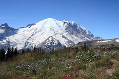 Burroughs Mountain, Mt Rainier National Park