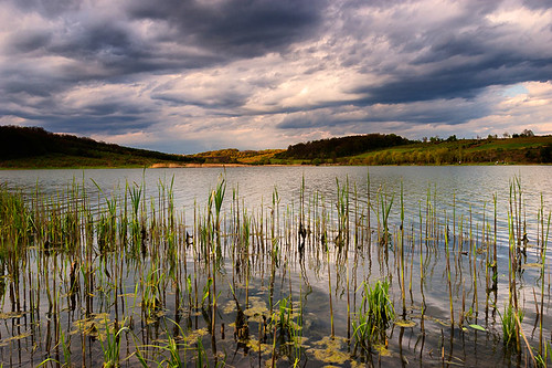 trees sky cloud lake reflection tree green 20d yellow horizontal canon reeds landscape eos spring hungary cloudy wave stormy hills zala reedy photomix bestevergoldenartists