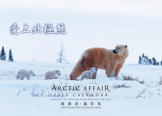 愛上北極熊桌曆