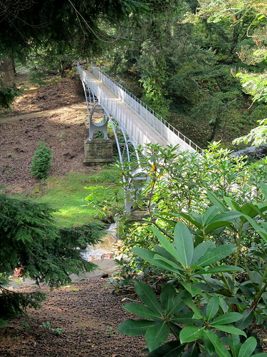Metal Bridge, Cragside
