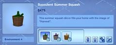 Succulent Summer Squash