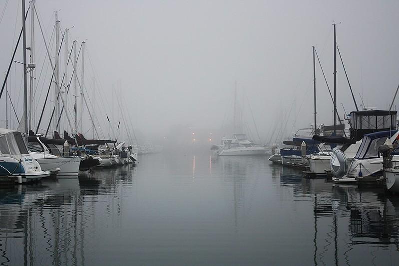 PP fog