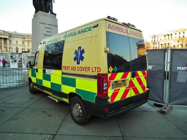 Tv Commercial Rescue Dog To Service Dogb