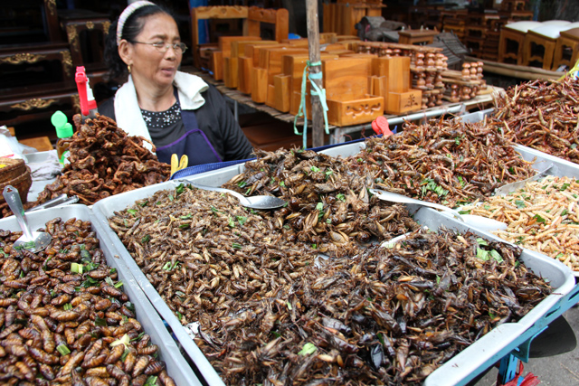 8263578084 1915398b8c o How to Eat Scary Insects, Worms, and Bugs in Thailand
