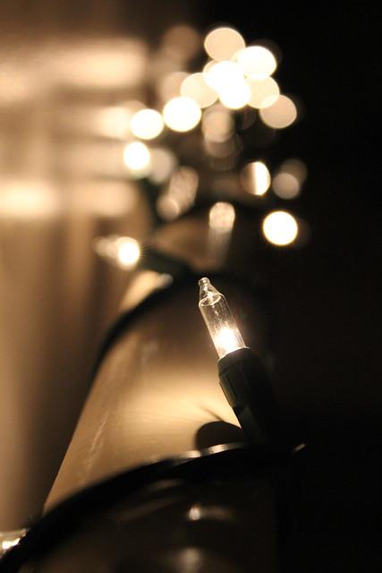 Day 283 - December 11, 2012