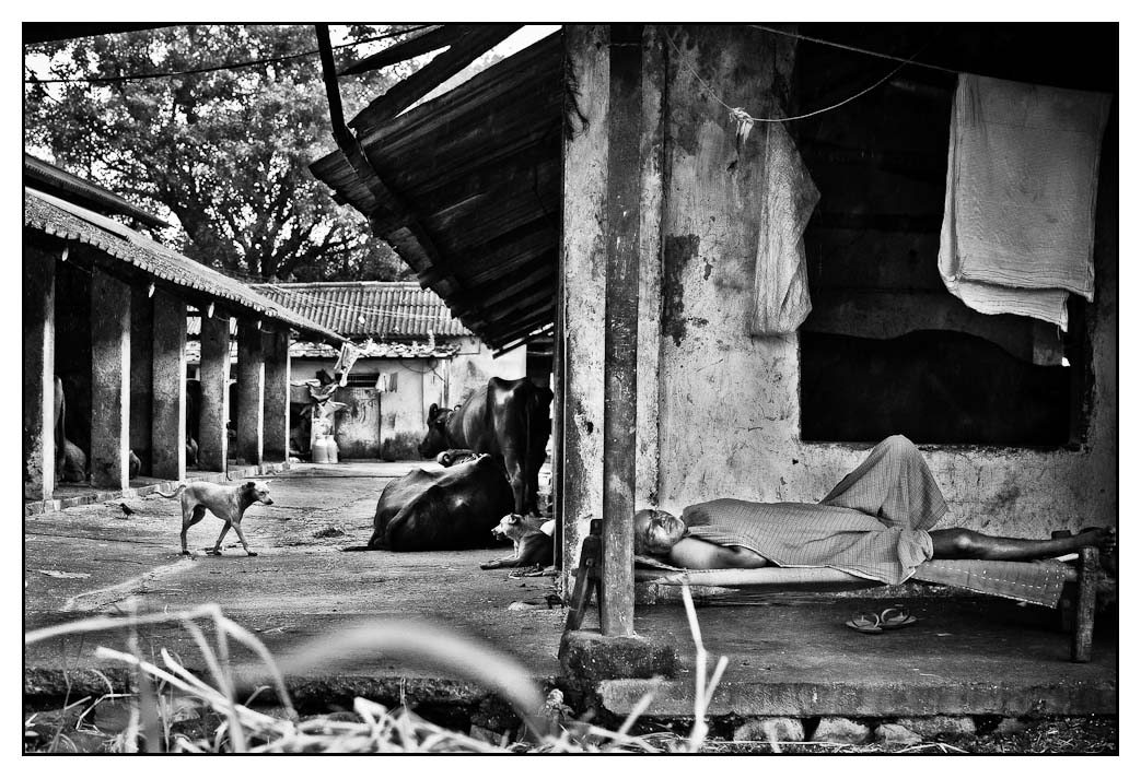 Siesta - Mayank Pandey amateur photographer from Mumbai India online photo exhibition street [hotography black and white Маянк Пандей фотограф любитель из Мумбай Индия онлайн фотовыставка стрит фотография черно белый