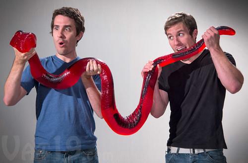 gummy-python-8-feet-long