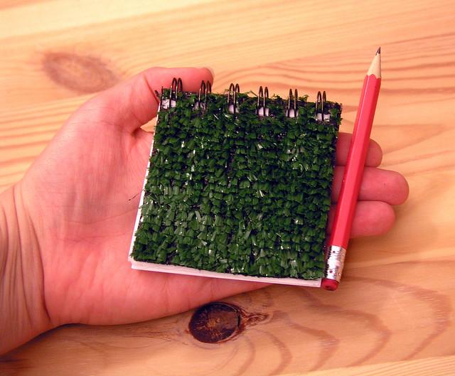 11.13 grass book