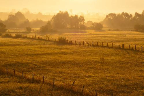 mist misty fog sunrise landscape minolta romania 5d konica dynax sunray moldova landschap zonsopgang moldavia roemenië românia konicaminoltadynax5d moldavië neamț vânătorineamț