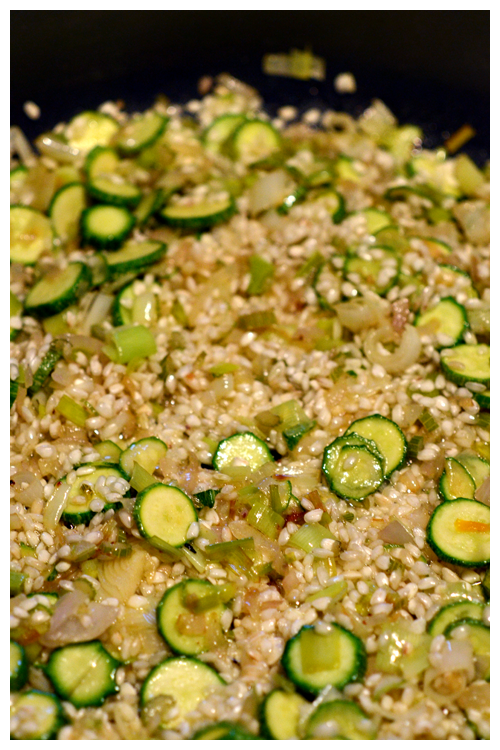 Leek and Zucchini Risotto© by Haalo