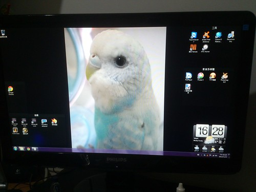 Annie's 電腦桌面