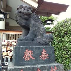 狛犬探訪 南大井天祖諏訪神社 子連れでない