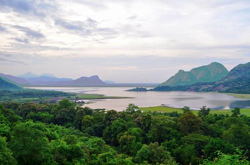 Palaru? (near Palani Hills)
