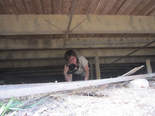 mississippi unitedstates 2012 loghouses smithcounty dukeshouse