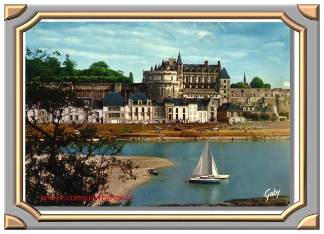 706 - Amboise (Indre et Loire) Le Château Royal et la Loire -70-150