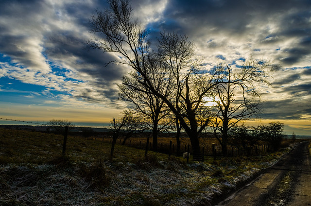 wintery_sky