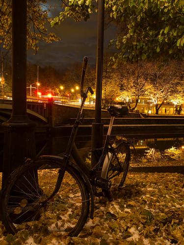city autumn snow nature leaves bicycle fallingoftheleaves pvanhala