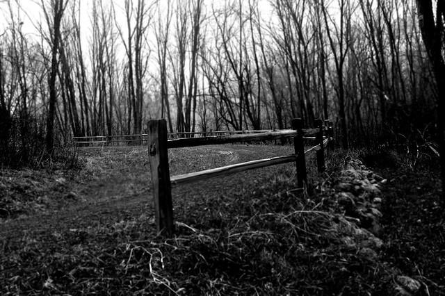 Trail fence