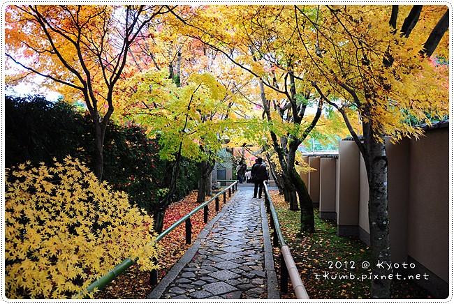2012-11-24 11.50.58.jpg