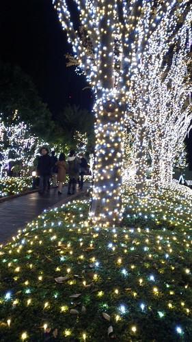 イルミネーション@新宿サザンテラス(スーパー夜景)