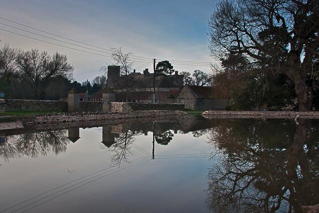 A Village Pond Reborn